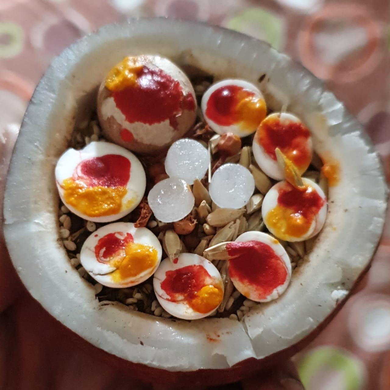 Holika Dahan Ahuti Coconut